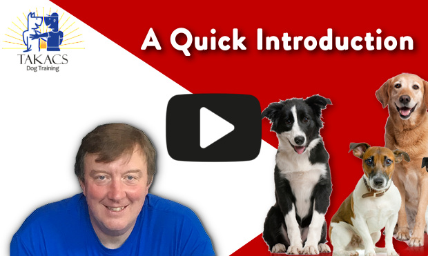 A quick introduction to Takacs Dog Training video